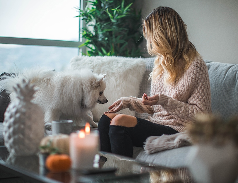 Precision | Women and dog on couch